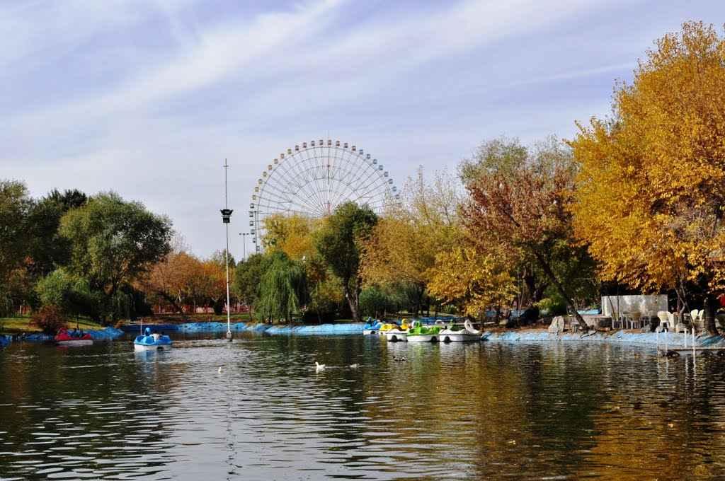 بوستان ملت آزاد شهر مشهد